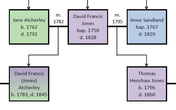 Tree - Atcherley and Jones: CLick to view full tree in PDF format
